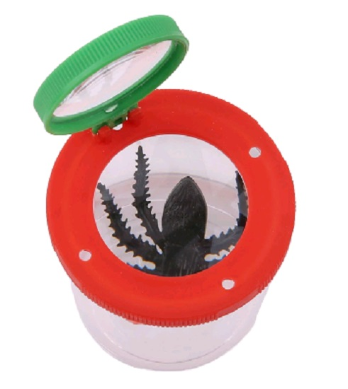 Bug Magnifier Container